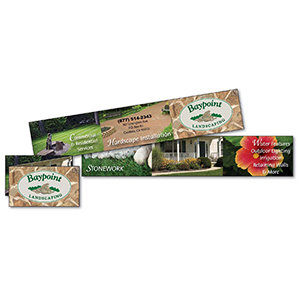 Item: T19986 - 6 Panel Mini Brochure