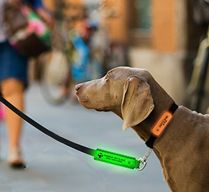 Item:  RF280 - LED Pet Leash Wrap